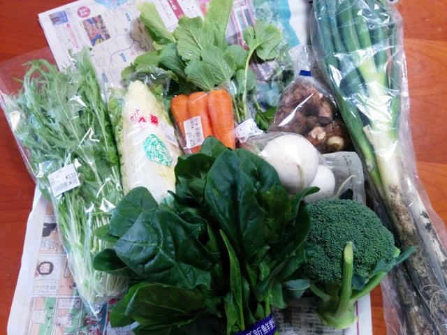 野菜大収穫