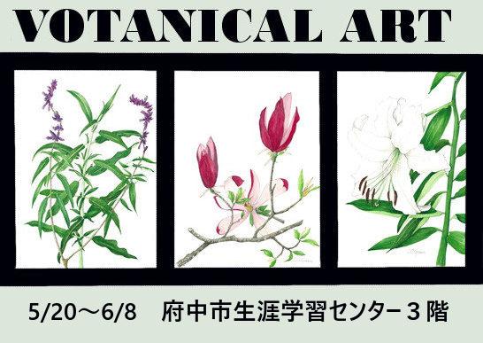 第19回植物画さつき展