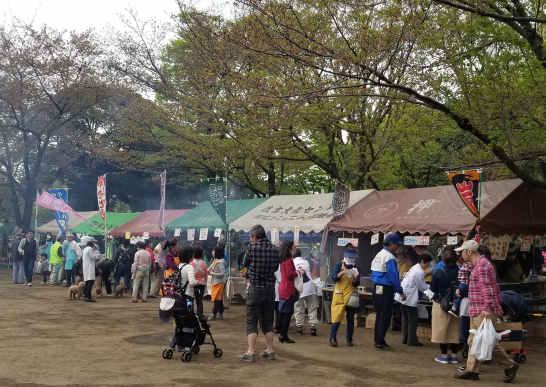 府中公園のさくら祭り