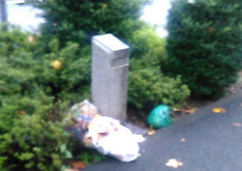 東八道路のゴミ